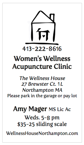 Wellness House Acupuncture Clinic Flyer With Border